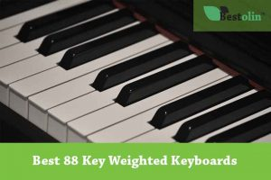 Best 88 key Weighted Keyboard Review